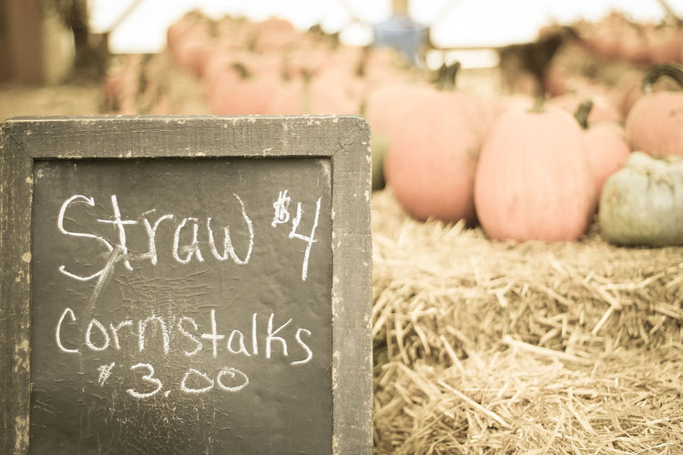 Close-up of text on blackboard against pumpkins at market