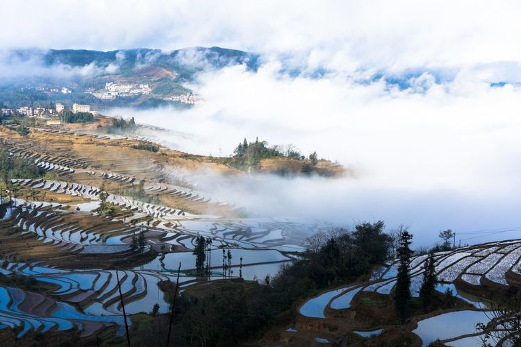 Architecture Cloud Farm Field Nature Rural Yuanyang Terraced Fields Anthropomorphic Face Beatiful Nature China Countryside Ethnic Historical Pollution Yuanyang Yunnan