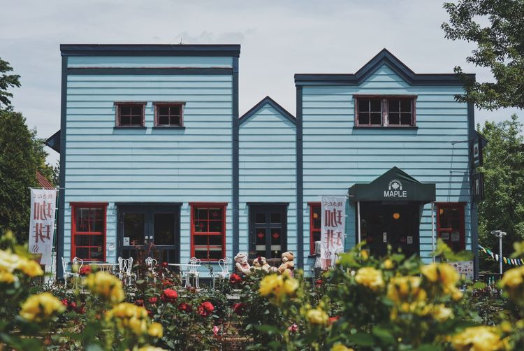 Processed with VSCO with a9 preset Building Exterior Architecture Built Structure Plant Building House Nature Flower Flowering Plant Day No People Residential District Outdoors Growth Window Sky Selective Focus Beauty In Nature Cloud - Sky Yellow Row House