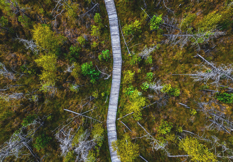 DJI Mavic Pro DJI X Eyeem Lithuania Beauty In Nature Bridge Change Connection Day Flowing Water Forest Green Color Growth High Angle View Kaunas Land Nature No People Non-urban Scene Outdoors Plant Scenics - Nature Tranquil Scene Tranquility Tree Water