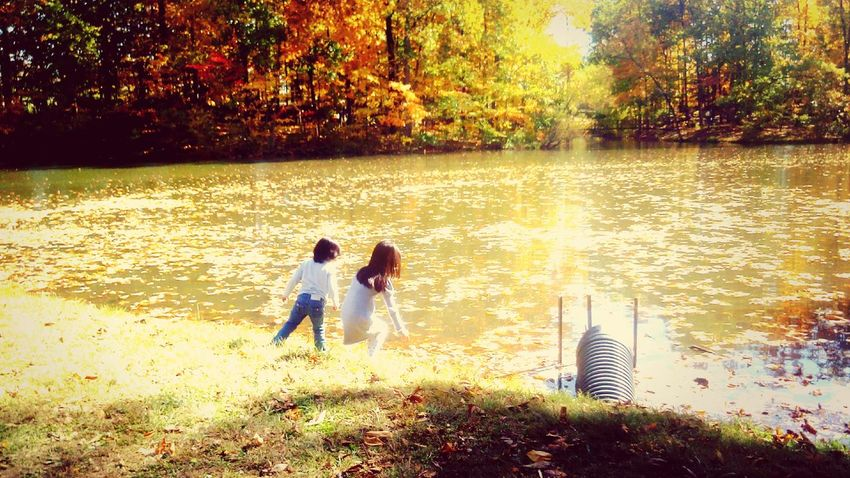 My beautiful little sisters Pond Little Sisters Water Autumn Leaves