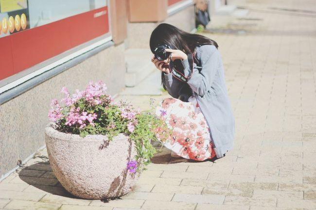 Taking photos of people taking photos.