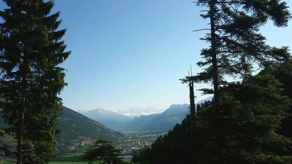 Berge Wald Schöne Aussicht  Schönes Wetter Frühling 2016