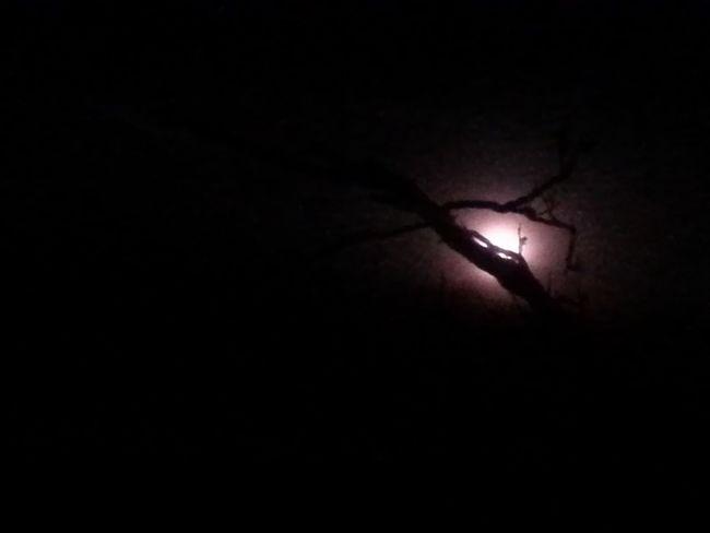Black Creative Light And Shadow CreativePhotographer EyeEm Best Shots EyeEm Best Shots - Night Photography Full Moon Light And Shadow Mystery Scary Night Shadows & Lights