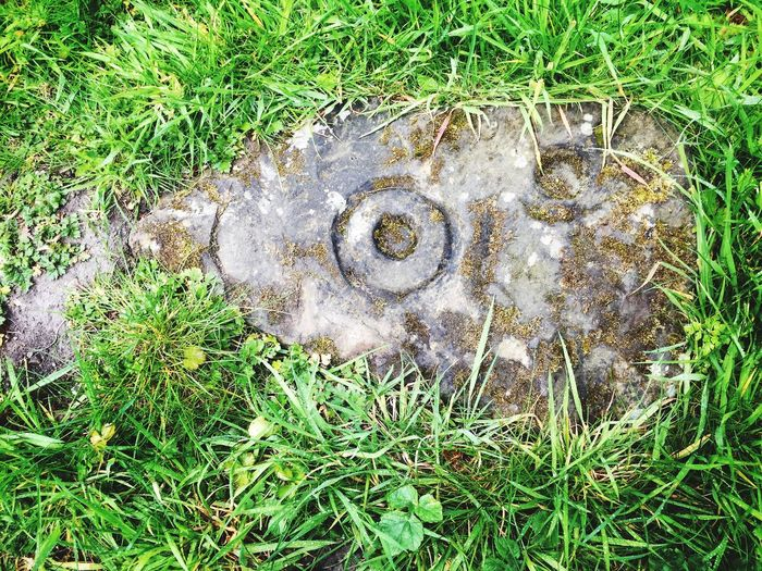 Bracken Hall Baildon Bradford Prehistoric Life Prehistory Grass High Angle View No People Outdoors Field Day Growth Green Color Nature Cupandring Prehistoric Art History Stonework Close-up