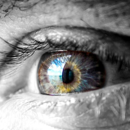 The greatest prison people live in is the fear of what other people think. So look deep inside and think only of yourself. Human Eye Eyelash Eyesight Human Body Part Eyeball Sensory Perception Macro Close-up For The Love Of Photography Colour Splash Black&white