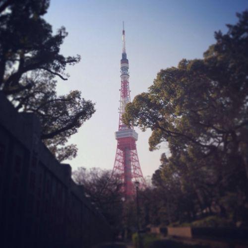 東京タワー Tokyo Tower のぼったのははじめて…かな?