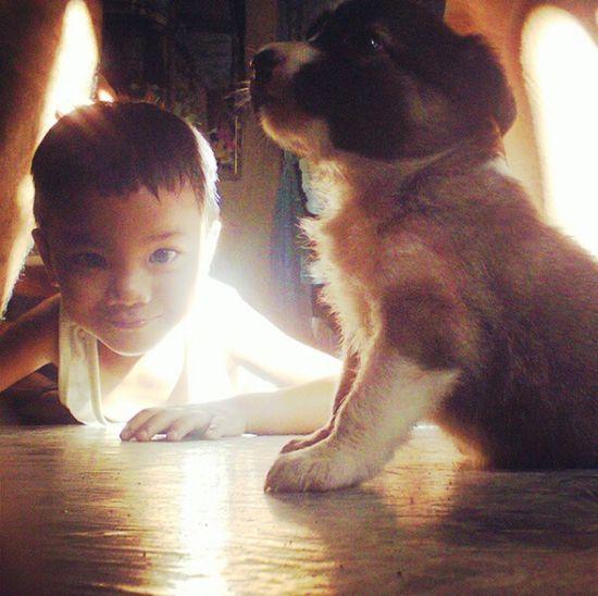 A bit of Sunshine ☀ on my boys face with the baby yola.. Enjoying Life Taking Photos Pets Corner Capture Selfie✌ Summerheat Popularshot Sunkissed Goodmorning