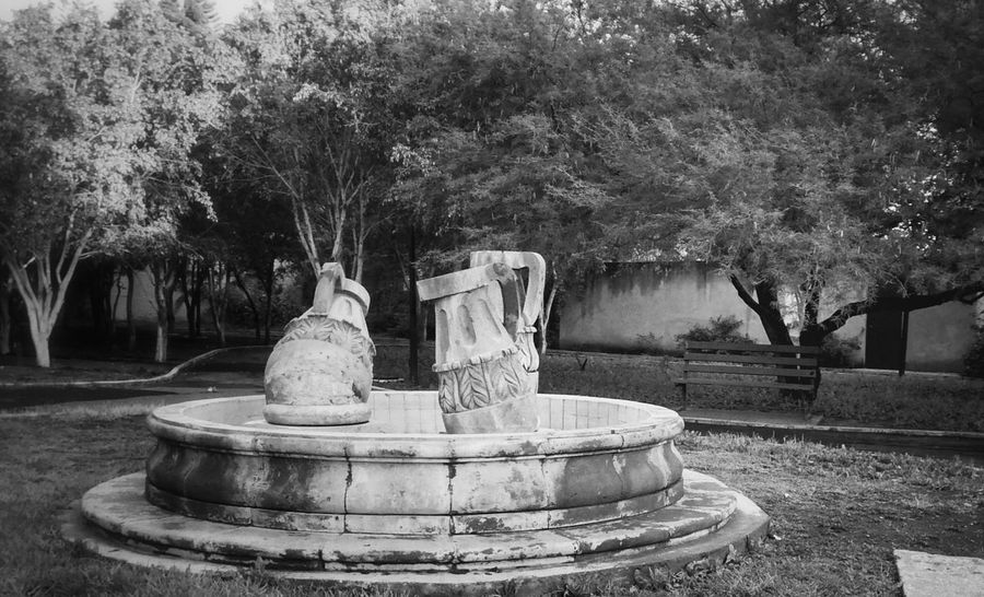 Fuente antigua. Alfredbass Fountain Park Black & White
