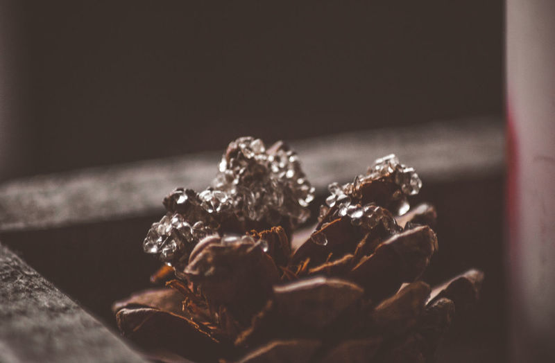 Close-up Indoors  Still Life No People Focus On Foreground Selective Focus Jewelry Nature Freshness Table Food And Drink Shiny Dry Plant Pattern Food Sweet Food Wood - Material Brown Precious Gem Dried Diamonds