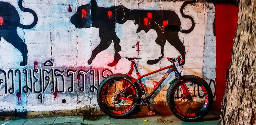 Painted Image Bicycle Street Art Graffiti Wall - Building Feature Architecture Built Structure Close-up