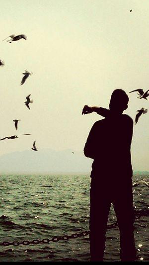 Relax Bird Tbt ☺ Relax Time  Turkeyphotooftheday EyeEm Best Shots Birzamanlar Köyceğiz Köyceğiz Gölü Bestshot Aniyakala Zamanidurdur Adapted To The City