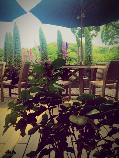 Relaxing Holiday Enjoying The Sun Coffee Break