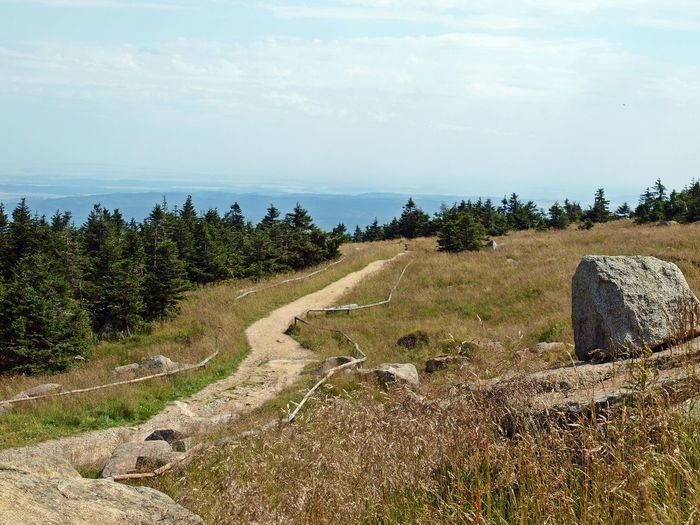 Brockengipfel, Wanderpfad, Harz, // Brocken summit, hiking path, Harz mountains Germany🇩🇪 Hiking Nationalpark Harz Wandern 🌄 Beauty In Nature Brocken Cloud - Sky Gipfel Landscape Naturpark No People Outdoors Scenics Sky Summit View Tranquil Scene Tranquility Tree Wege