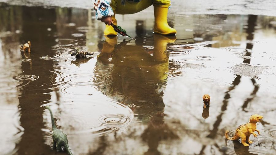Low Section Of A Boy Playing With Dinosaur On Puddle During Rainy Season