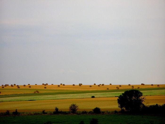 Bales Countryside Farm Field Harvest Hay Hay Bale Hay Bales Hay Bales On Field Haystack Haystacks Sky Stack
