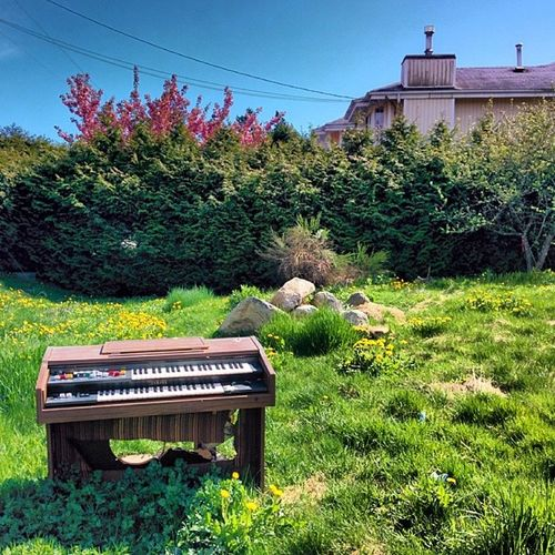 There was a Piano in my Path Sunnydat Richmond