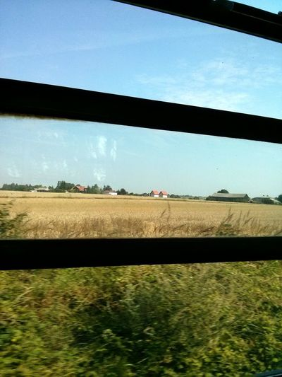 Traveling Train Landscape The Purist (no Edit, No Filter)