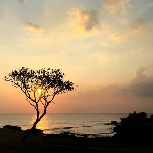 Sunset Golden Hour Sea Sun Horizon Over Water Water Tranquil Scene Silhouette Tourism Sky Beauty In Nature Vacations Tranquility Idyllic Travel Destinations Seascape Tanah Lot Bali, Indonesia Sun Behind Tree The Magic Mission The Great Outdoors - 2017 EyeEm Awards Live For The Story