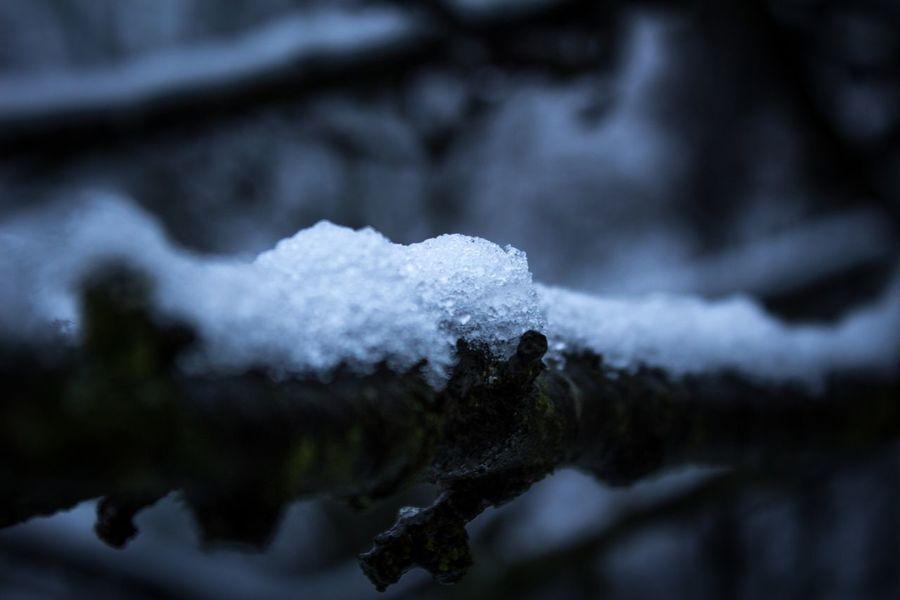 Photo Photography Photographer New Potogrpher Snow ❄ Snow