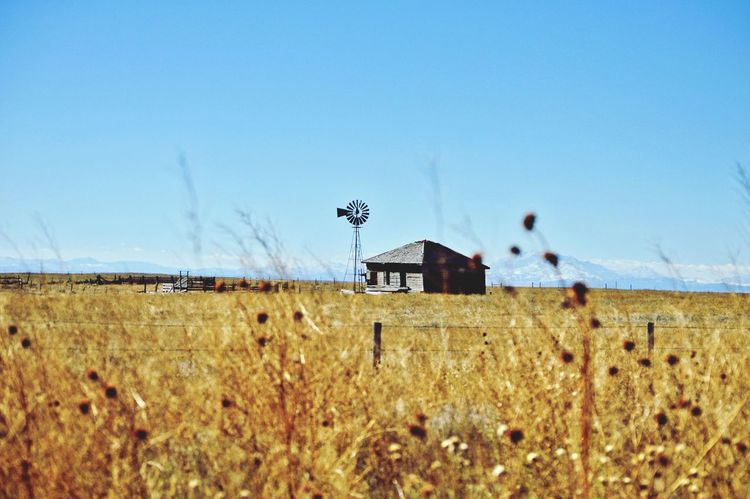 Abandoned but still standing Mountains In Background West Of Lusk Wyoming Grass Outdoors Sunshine In The Distance. Rural Scene Clear Sky Field Sky Countryside Country House