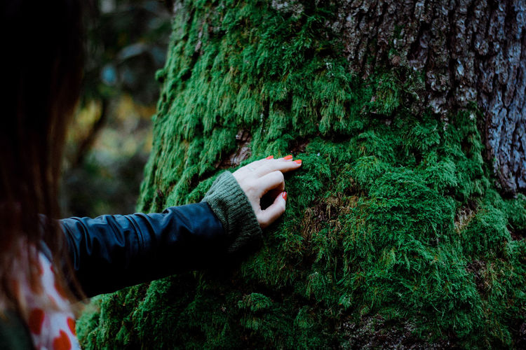 Midsection of woman touching moss covered tree trunk