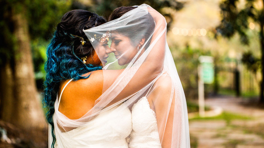 Wedding Bride Couple - Relationship Emotion Lifestyles Love Is Love Newlywed Positive Emotion Real People Togetherness Waist Up Wedding Women Young Women