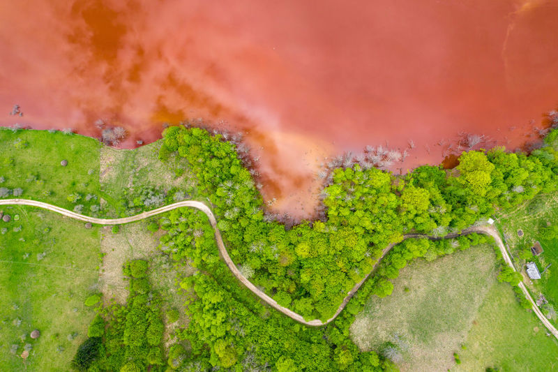 Aerial view of colorful red copper mining waste water in contrast with fresh green forest by drone No People Nature Outdoors Mining Mining Industry Mining Exploration Mine Open Pit Mine Waste Waste Lake Toxic Toxic Substance Water Red Water Colorful Environment Epic Absrtact Rosia Montana Geamana Romania Copper  Gold Residuals Aerial View Aerial Aerial Photography Aerial Shot Aerial Landscape Drone  Dronephotography Drone Photography Droneshot Industrial Flooded Lake Pond Pollution Leaking Tainted Ecology Ecology Problem Nature Contamination Cyanide Cyanide Lake Colorful Water Mining Water Waste Water Hazardous