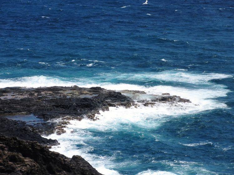 Water Wave Sea Beach Crash Blue Summer Crashing Surf Tide Flowing Water Coastline Splashing Seascape Coast