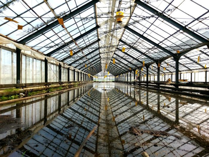 Interior Of Abandoned Greenhouse