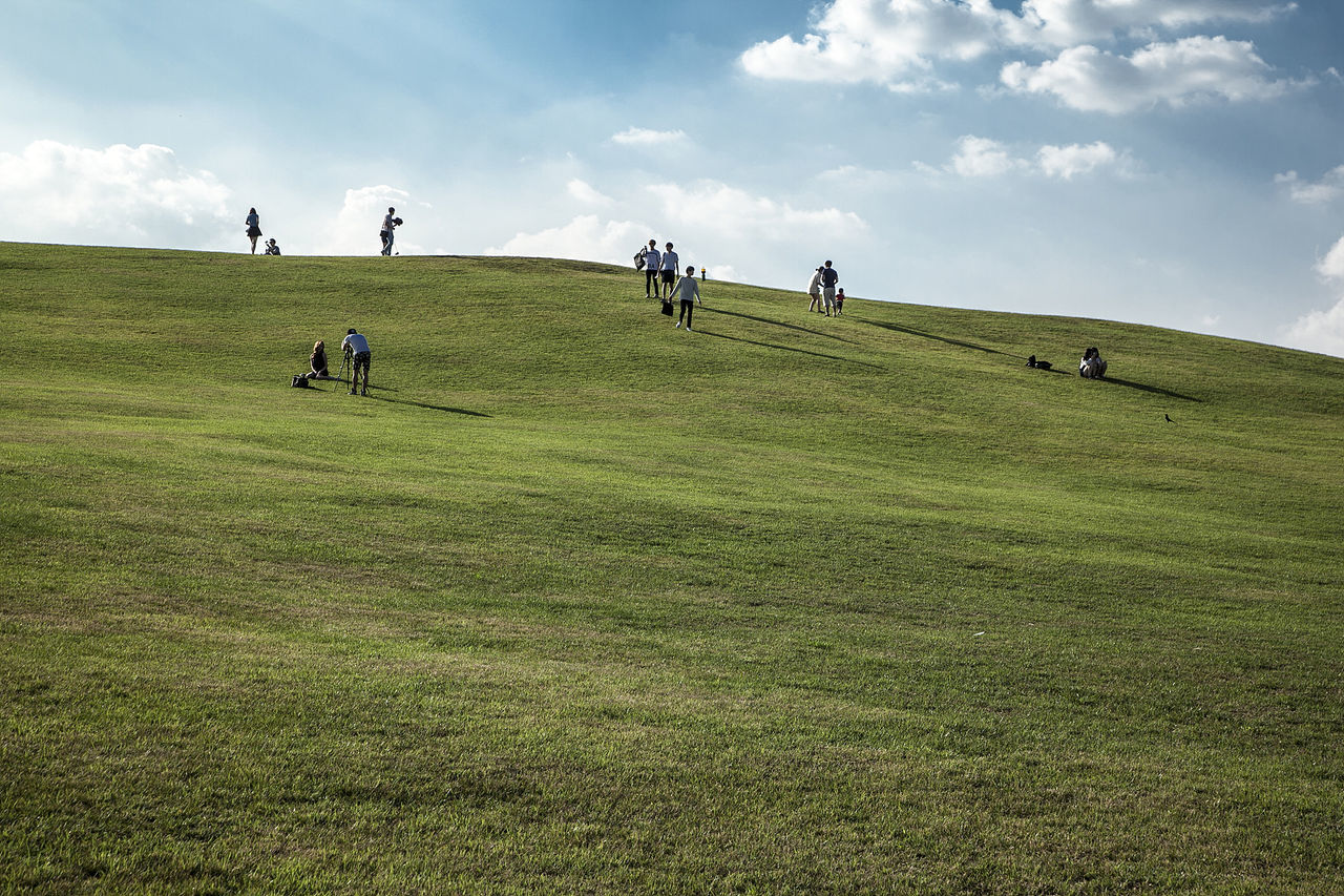 People enjoying on grassy field against sky