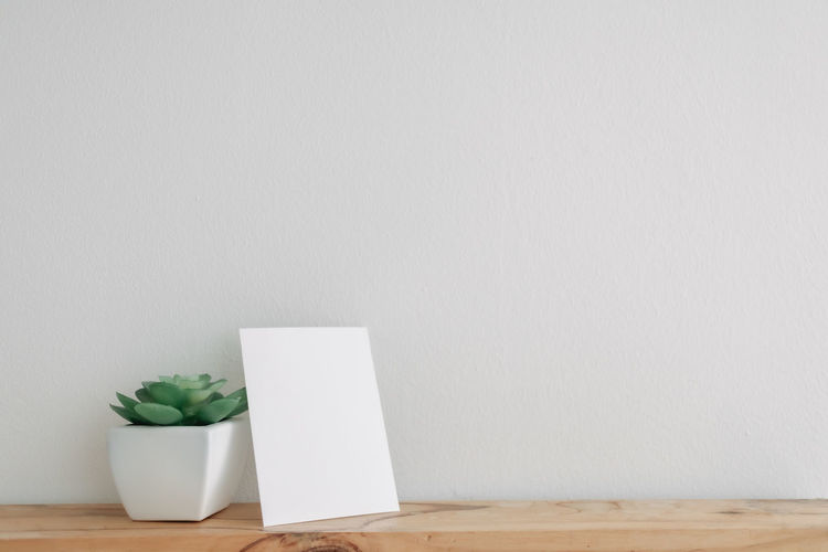 White potted plant on table against wall
