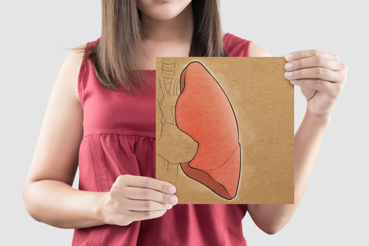 Lung Illustration Paper Woman Holding