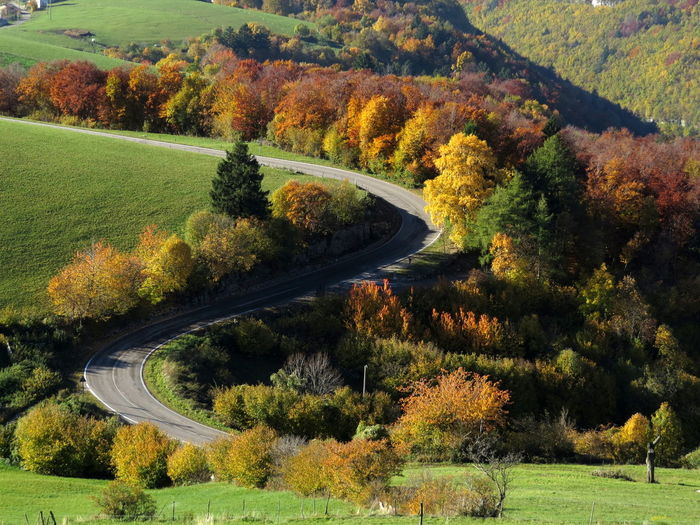 Autumn Colors Beautyinnature  Bending Roads Countryside Landscape_photography Non-urban Scene Relaxing Moments View From Above Winding Road Landscapes With WhiteWall An Eye For Travel