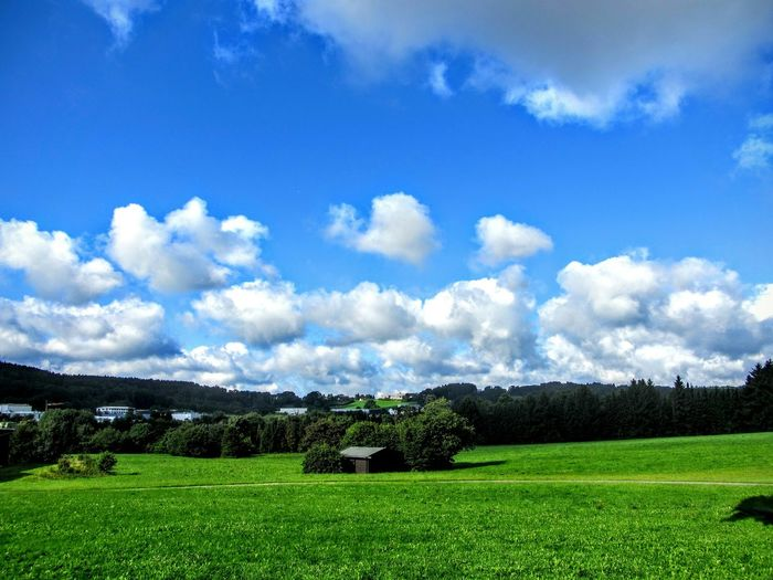 Scenic view of green landscape against cloudy blue sky