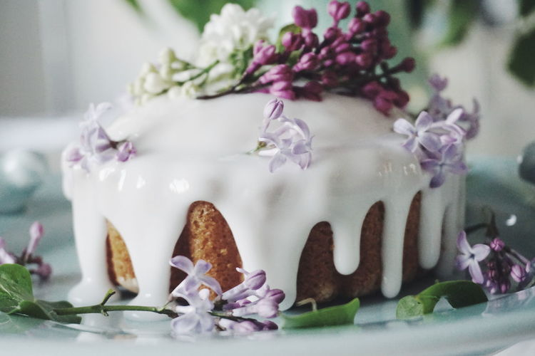 Close-up of purple flowers on cake