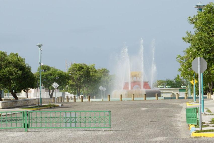 Fountain Lion Fountain Puerto Rico Laguancha