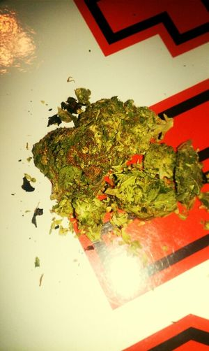 AM ON THAT LOUD