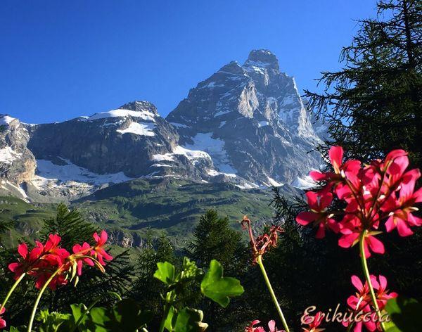 Cervino Matterhorn  Montagne Cervinia Cervino Ilovevalledaosta Italy Valledaosta Volgoitalia Volgoitalia_ Volgovalledaosta