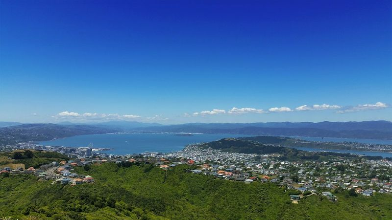 This is my beautiful city ❤👍 Wellington  New Zealand Wellington Harbour Beautiful Day I Love My City Capital Cities