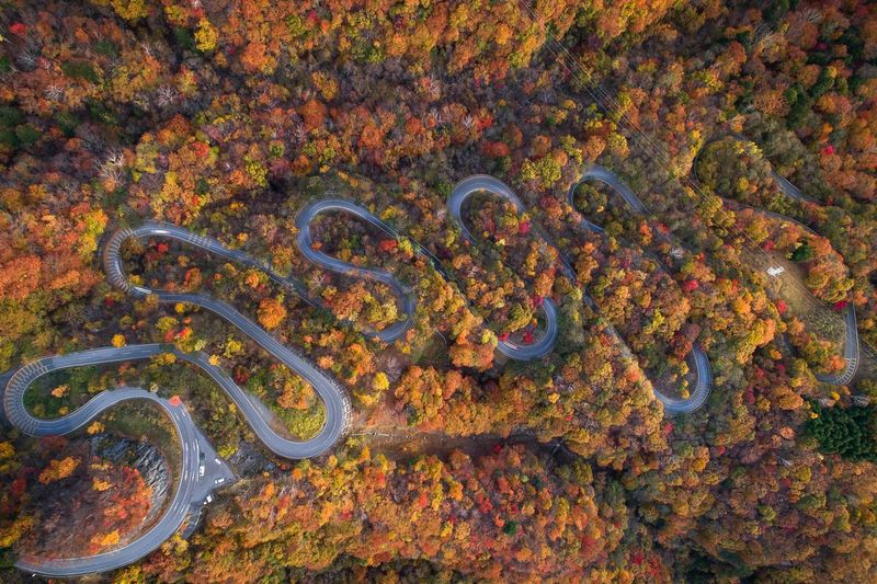 Aerial view of winding road amidst trees in forest during autumn
