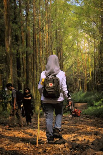 Full length of people walking in forest