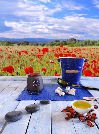 Flower pot on table against blue sky