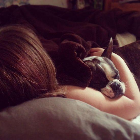 A Punky and her Puppy . SnuggleSaturday Artex