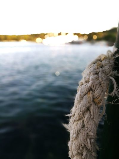 Sailing line nearby great, clear water. Love For Water Sailing Marine Life Nautical Rope Water Sea View Child Of The Tides
