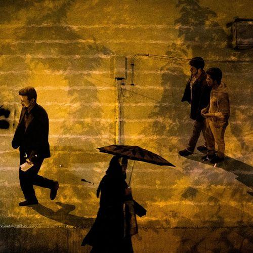 Streetphotography Tehran Iran Rainy Day Woman Umbrella