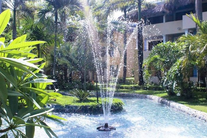 Architecture Beauty In Nature Blurred Motion Building Exterior Day Drinking Fountain Fountain Growth Irrigation Equipment Long Exposure Motion Nature No People Outdoors Palm Tree Plant Running Water Splashing Spraying Sprinkler Swimming Pool Tree Water Water Park Waterfall