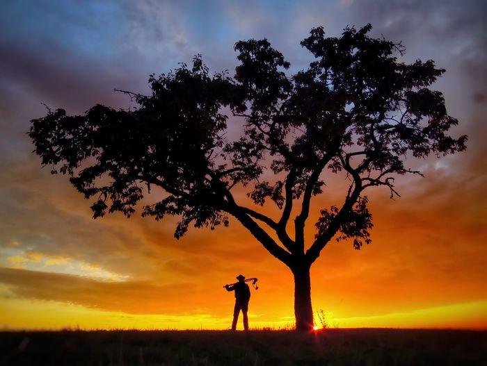 """A new day is starting"" Sunset Tree Silhouette Real People Sky Nature Beauty In Nature One Person Scenics Leisure Activity Men Cloud - Sky Outdoors Lifestyles Tranquil Scene Growth Landscape People Silhouette Sunrise Https://www.facebook.com/mh.photography.de/ Michael Hruschka Sonnenaufgang Sonnenuntergang Photographer"