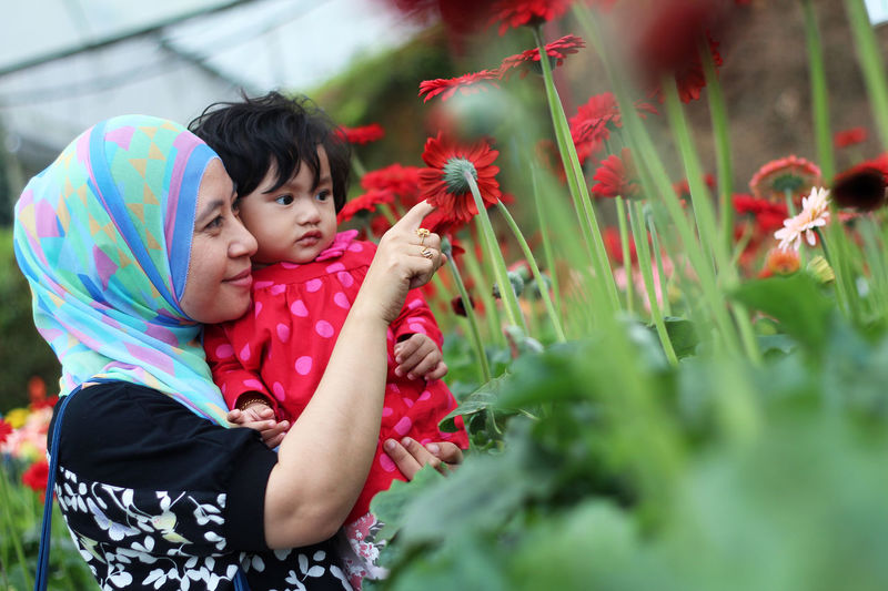 Muslim young mother wearing hijab with her little kids on garden background. happy together Childhood Child Togetherness Family Bonding Plant Females Women Flower Real People Family With One Child Casual Clothing Leisure Activity Innocence Selective Focus Males  Flowering Plant Positive Emotion Care Daughter Outdoors See Flowers Muslim Mother Young Mother Wearing Hijab Muslim Women Litlle Girl Little Girl Happy People Park Outdoor Asian Girl Asian Woman Asian Women