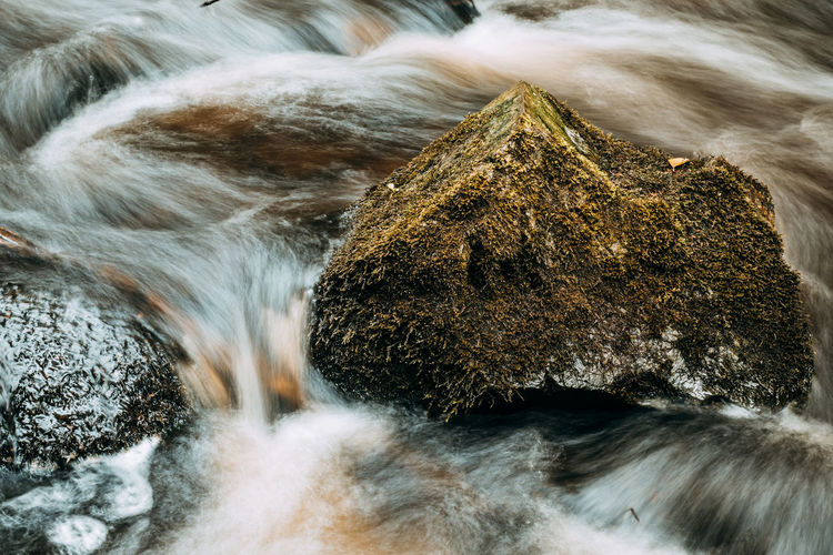 Forsakar in Degeberga, southern Sweden Creek EyeEm Nature Lover EyeEm Gallery EyeEmNewHere Nature Reflection Rock The Week On Eyem Tranquility Beauty In Nature Blurred Motion Exposure Eye4photography  Forest Long Long Exposure Moss Motion No People Rock - Object Tranquil Scene Water